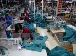Many garment enterprises have orders until the end of the second quarter